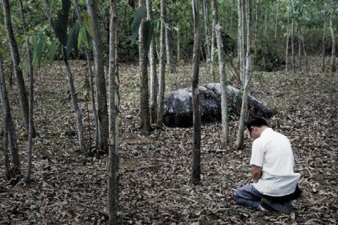 Hàn Quốc thật lòng hối lỗi vì thảm sát dân Việt Nam